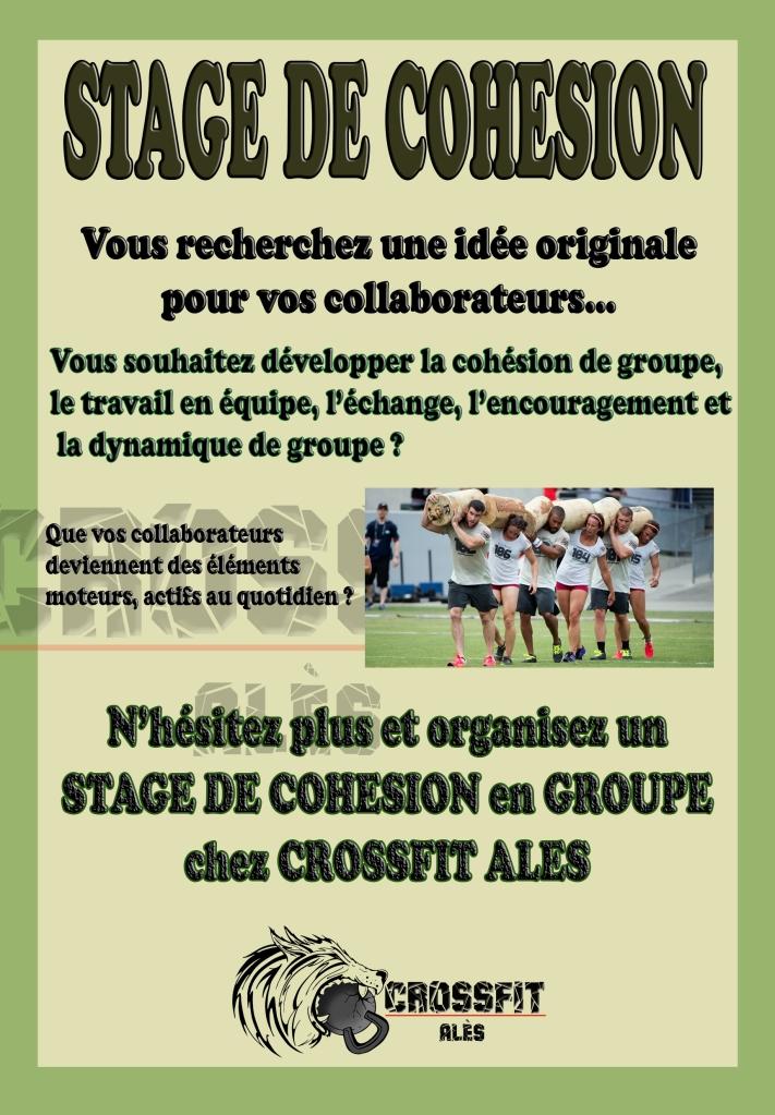 stage-de-cohesion-recto